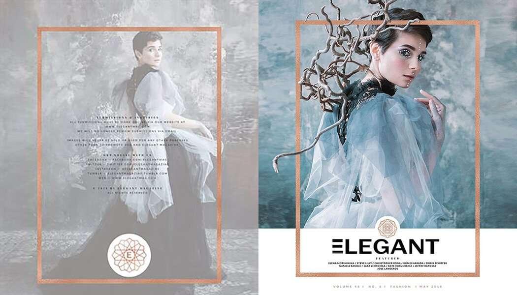 elegant-it-ftr-img-upd